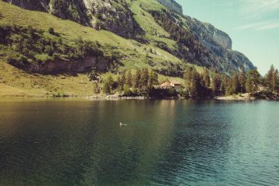 Appenzell13,Wandern, Landschaft, Berge